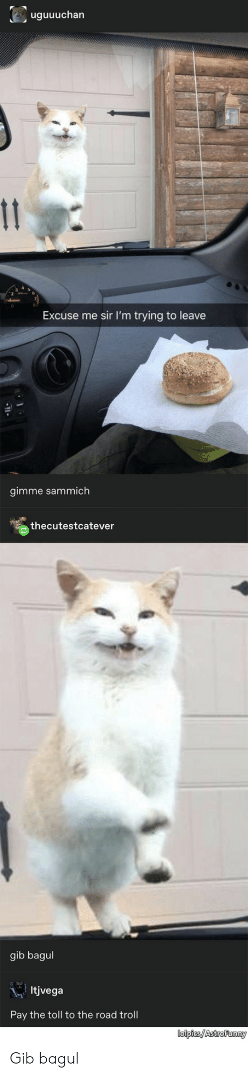 Troll: uguuuchan  11  Excuse me sir I'm trying to leave  gimme sammich  thecutestcatever  gib bagul  Itjvega  Pay the toll to the road troll  lolpies/AstroFunny Gib bagul
