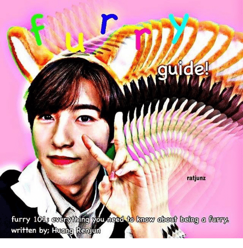 Furry, You, and Everything: uide  ratjunz  know about being a furry.  furry 101s everything you heed to  written by; Huang Renjun