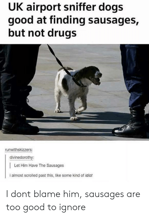 Dogs, Drugs, and Good: UK airport sniffer dogs  good at finding sausages,  but not drugs  runwithskizzers:  divinedorothy:  Let Him Have The Sausages  i almost scrolled past this, like some kind of idiot I dont blame him, sausages are too good to ignore
