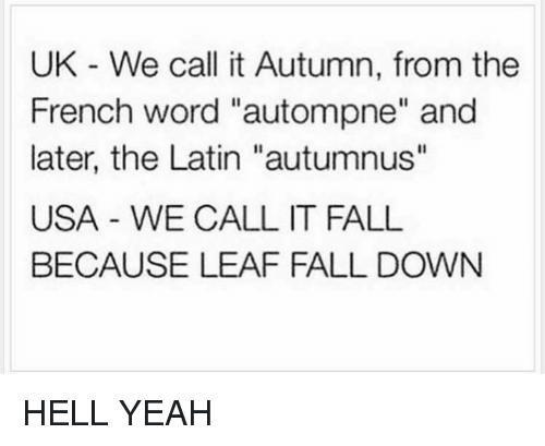 """Falling Down, Usa, and Latin: UK We call it Autumn, from the  French word """"autompne"""" and  later, the Latin """"autumnus""""  USA WE CALL IT FALL  BECAUSE LEAF FALL DOWN HELL YEAH"""
