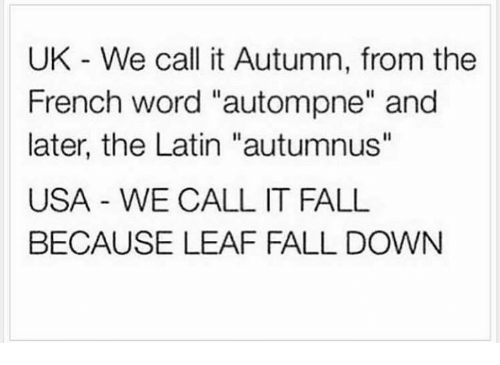 """Dank, Falling Down, and 🤖: UK We call it Autumn, from the  French word """"autompne"""" and  later, the Latin """"autumnus''  USA WE CALL IT FALL  BECAUSE LEAF FALL DOWN"""