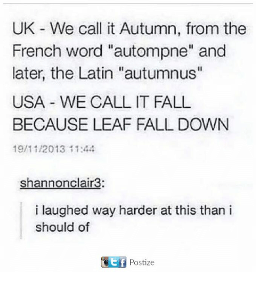 """Fall, Word, and French: UK We call it Autumn, from the  French word """"autompne"""" and  later, the Latin """"autumnus""""  USA WE CALL IT FALL  BECAUSE LEAF FALL DOWN  19/11/2013 11:44  Shannonclair3:  i laughed way harder at this than i  should of  t f  Postize"""