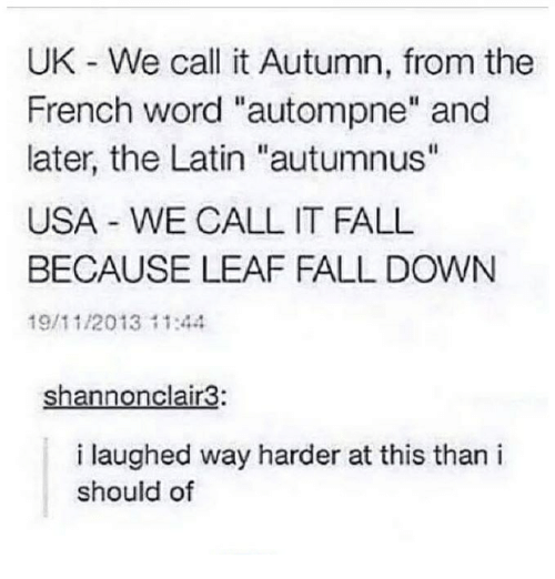 """Fall, Word, and French: UK We call it Autumn, from the  French word """"autompne"""" and  later, the Latin """"autumnus""""  USA WE CALL IT FALL  BECAUSE LEAF FALL DOWN  19/11/2013 11:44  Shannonclair3:  i laughed way harder at this than i  should of"""
