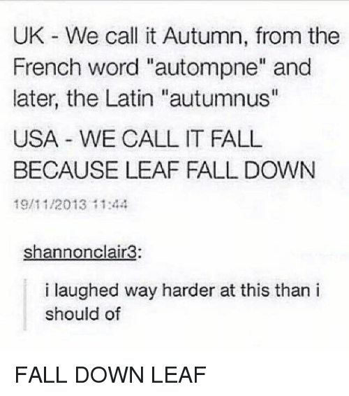 "Fall, Memes, and Word: UK We call it Autumn, from the  French word ""autompne"" and  later, the Latin ""autumnus""  USA WE CALL IT FALL  BECAUSE LEAF FALL DOWN  19/11/2013 11:44  shannonclair3:  i laughed way harder at this than i  should of FALL DOWN LEAF"