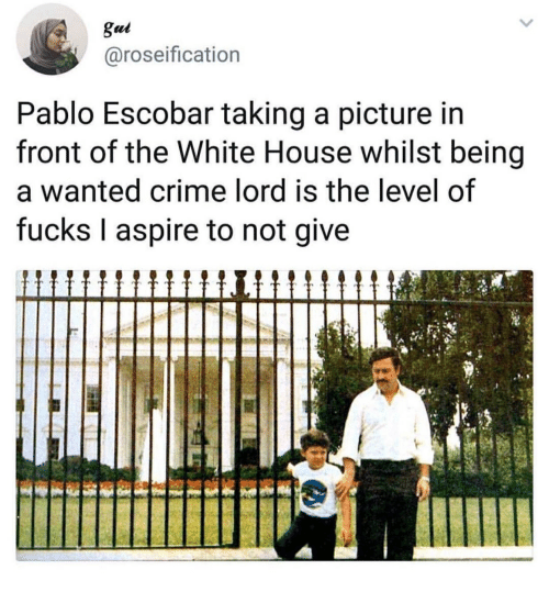 Crime, Pablo Escobar, and White House: ul  @roseification  Pablo Escobar taking a picture in  front of the White House whilst being  a wanted crime lord is the level of  fucks I aspire to not give