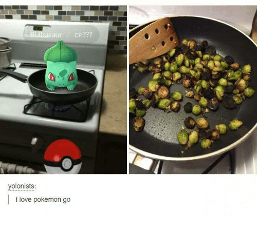 Love, Pokemon, and Humans of Tumblr: ulbasaur cp  yolonists  i love pokemon go