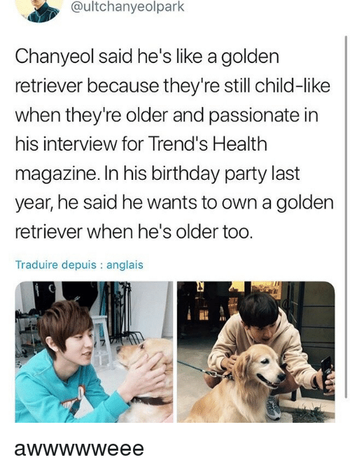 Chanyeol: @ultchanyeolpark  Chanyeol said he's like a golden  retriever because they're still child-like  when they're older and passionate in  his interview for Trend's Health  magazine. In his birthday party last  year, he said he wants to own a golden  retriever when he's older too.  Traduire depuis : anglais awwwwweee