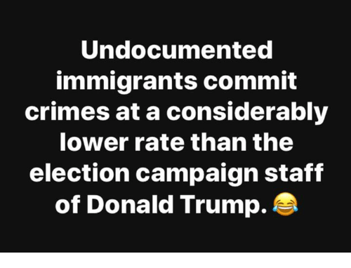 Donald Trump, Trump, and Election: Undocumented  immigrants commit  crimes at a considerably  lower rate than the  election campaign staff  of Donald Trump.