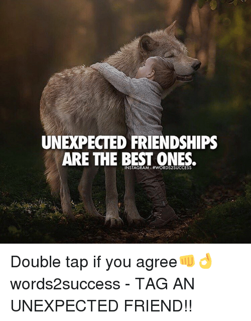 Memes, Friendship, and 🤖: UNEXPECTED FRIENDSHIPS  ARE THE BEST ONES. Double tap if you agree👊👌 words2success - TAG AN UNEXPECTED FRIEND!!