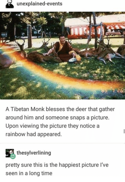 Deer, Rainbow, and Time: unexplained-events  A Tibetan Monk blesses the deer that gather  around him and someone snaps a picture.  Upon viewing the picture they notice a  rainbow had appeared  thesylverlining  pretty sure this is the happiest picture l've  seen in a long time