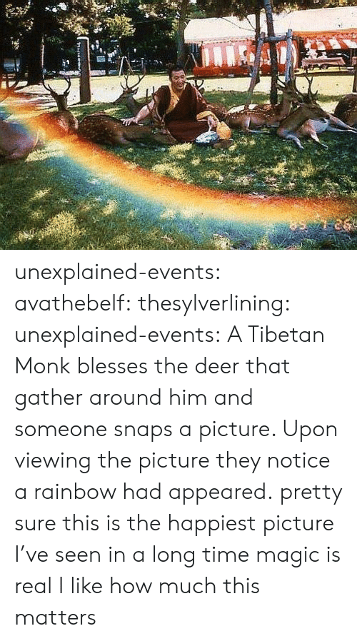 Deer, Target, and Tumblr: unexplained-events:  avathebelf:  thesylverlining:  unexplained-events:  A Tibetan Monk blesses the deer that gather around him and someone snaps a picture. Upon viewing the picture they notice a rainbow had appeared.  pretty sure this is the happiest picture I've seen in a long time  magic is real  I like how much this matters