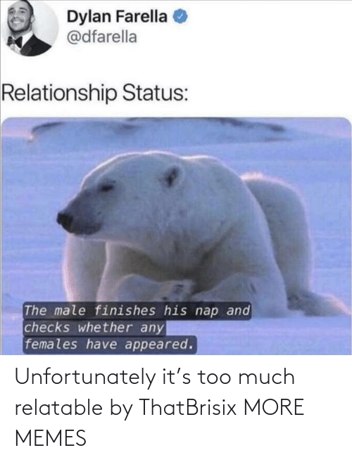 Too Much: Unfortunately it's too much relatable by ThatBrisix MORE MEMES