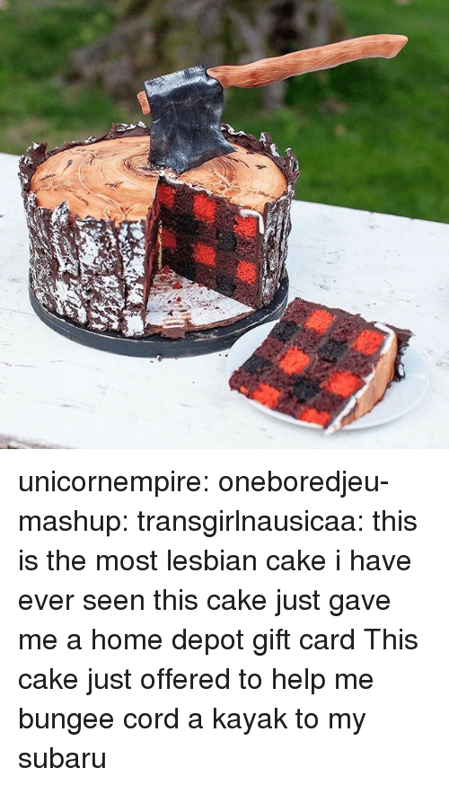 Tumblr, Blog, and Cake: unicornempire:  oneboredjeu-mashup:  transgirlnausicaa: this is the most lesbian cake i have ever seen  this cake just gave me a home depot gift card  This cake just offered to help me bungee cord a kayak to my subaru