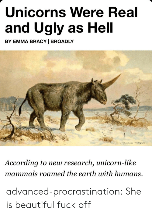 Beautiful, Tumblr, and Ugly: Unicorns Were Real  and Ugly as Hell  BY EMMA BRACY | BROADLY  According to new research, unicorn-like  mammals roamed the earth with humans, advanced-procrastination: She is beautiful fuck off