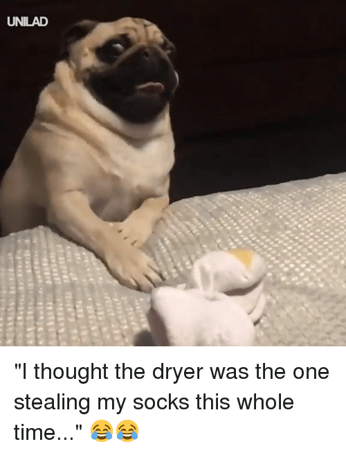 """Dank, Time, and Thought: UNILAD """"I thought the dryer was the one stealing my socks this whole time..."""" 😂😂"""
