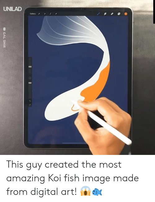 Dank, Fish, and Image: UNILAD  S  Gallery  O GAL SHIR This guy created the most amazing Koi fish image made from digital art! 😱🐟