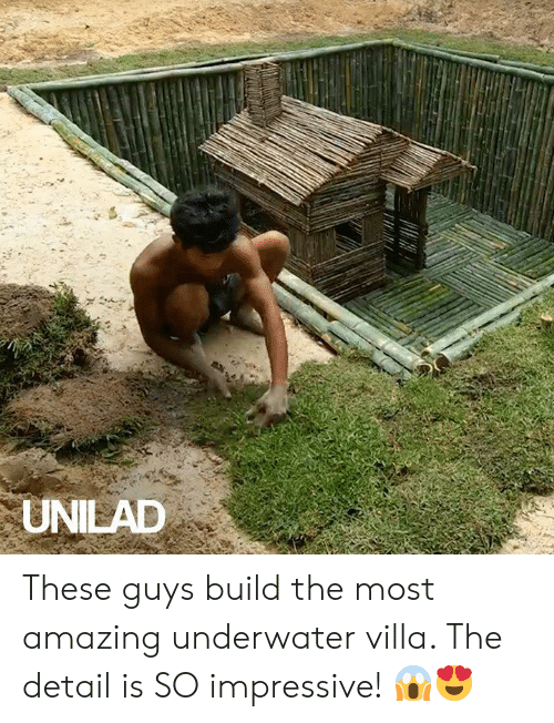 Dank, Amazing, and 🤖: UNILAD These guys build the most amazing underwater villa. The detail is SO impressive! 😱😍