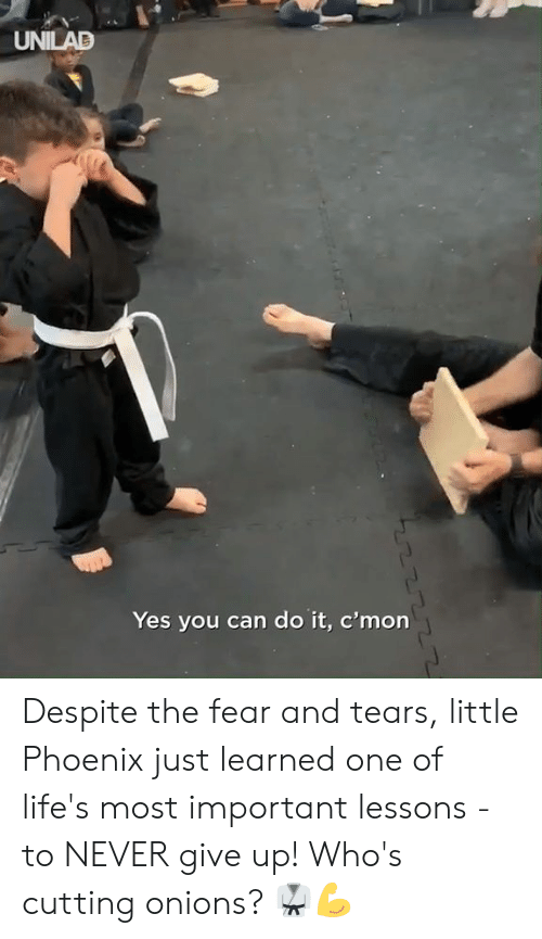 Dank, Phoenix, and Fear: UNILAD  Yes you can do it, c'mon Despite the fear and tears, little Phoenix just learned one of life's most important lessons - to NEVER give up! Who's cutting onions? 🥋💪