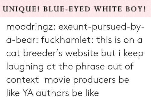 Be Like, Tumblr, and Bear: UNIQUE! BLUE-EYED WHITE BOY moodringz:  exeunt-pursued-by-a-bear:  fuckhamlet:  this is on a cat breeder's website but i keep laughing at the phrase out of context   movie producers be like   YA authors be like
