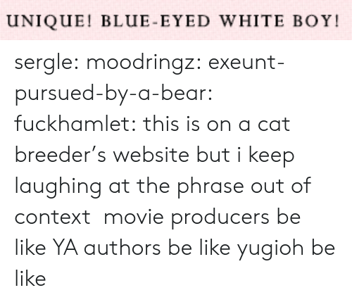 Be Like, Target, and Tumblr: UNIQUE! BLUE-EYED WHITE BOY sergle: moodringz:  exeunt-pursued-by-a-bear:  fuckhamlet:  this is on a cat breeder's website but i keep laughing at the phrase out of context   movie producers be like   YA authors be like   yugioh be like