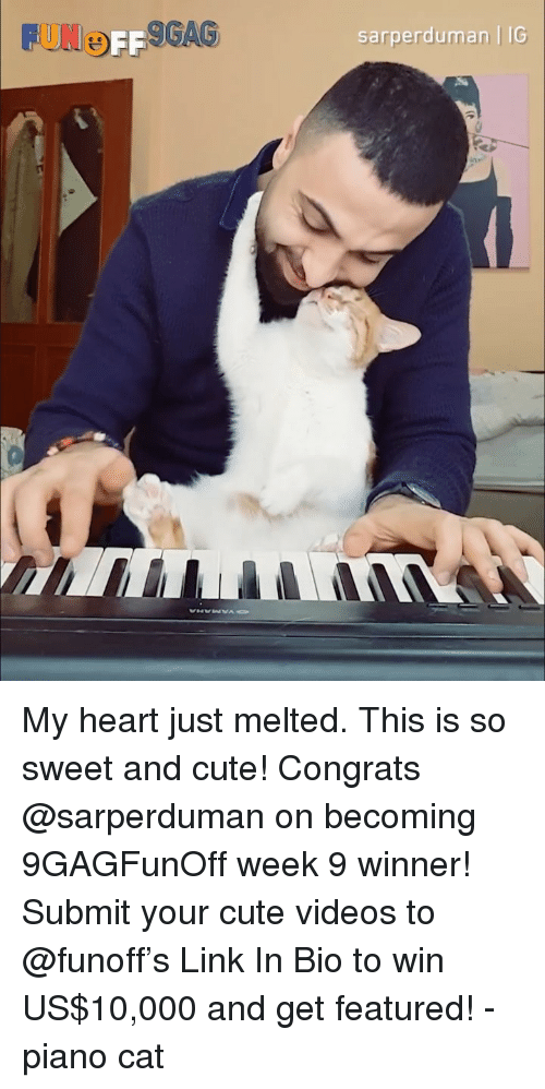 Cute, Memes, and Videos: UNOFF  GAS  sarperduman | IG My heart just melted. This is so sweet and cute! Congrats @sarperduman on becoming 9GAGFunOff week 9 winner! Submit your cute videos to @funoff's Link In Bio to win US$10,000 and get featured! - piano cat