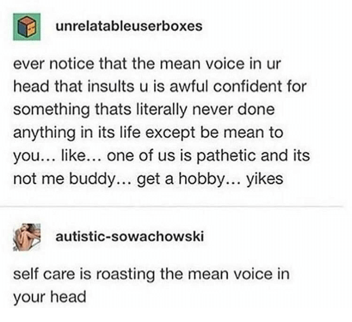 Insults: unrelatableuserboxes  ever notice that the mean voice in ur  head that insults u is awful confident for  something thats literally never done  anything in its life except be mean to  you... like... one of us is pathetic and its  not me buddy.. get a hobby... yikes  autistic-sowachowski  self care is roasting the mean voice in  your head