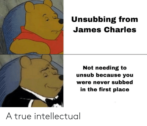James Charles: Unsubbing from  James Charles  Not needing to  unsub because you  were never subbed  in the first place A true intellectual