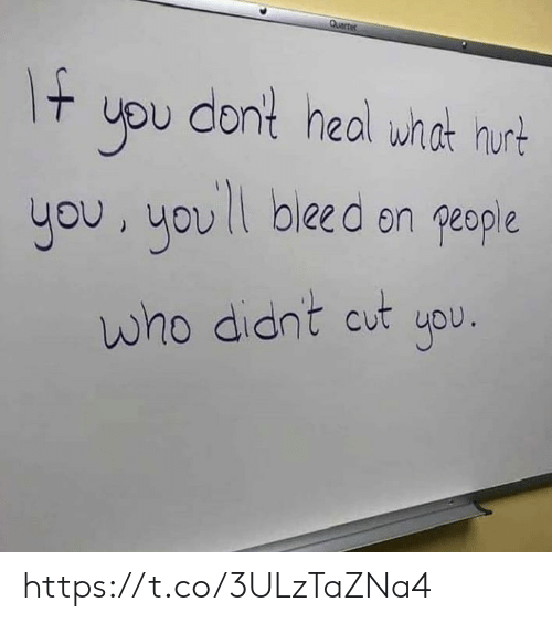 Memes, 🤖, and Who: uou dont heal wnat hurt  you, uov  bleed on people  who didnt cut upu https://t.co/3ULzTaZNa4
