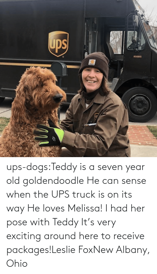 fox: ups-dogs:Teddy is a seven year old goldendoodle He can sense when the UPS truck is on its way He loves Melissa! I had her pose with Teddy It's very exciting around here to receive packages!Leslie FoxNew Albany, Ohio