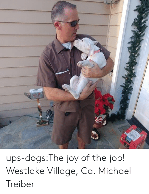 Dogs, Target, and Tumblr: ups-dogs:The joy of the job! Westlake Village, Ca. Michael Treiber