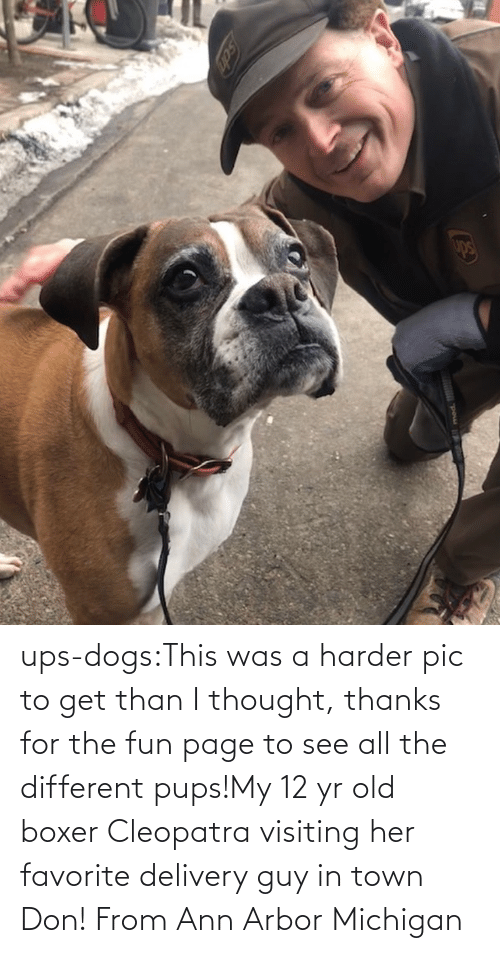 Harder: ups-dogs:This was a harder pic to get than I thought, thanks for the fun page to see all the different pups!My 12 yr old boxer Cleopatra visiting her favorite delivery guy in town Don! From Ann Arbor Michigan