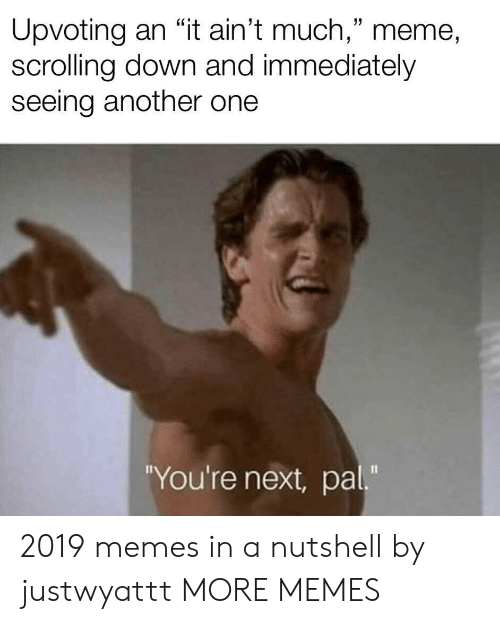 "Another One, Dank, and Meme: Upvoting an ""it ain't much,"" meme,  scrolling down and immediately  seeing another one  You're next, pal"" 2019 memes in a nutshell by justwyattt MORE MEMES"