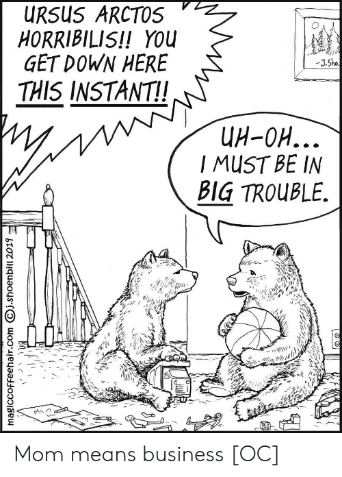 uh oh: URSUS ARCTOS  HORRIBILIS!! YOU  GET DOWN HERE  -J.Sho  THIS INSTANT!  UH-OH...  I MUST BE IN  BIG TROUBLE.  magiccoffeehair.com j.shoenbill 2019 Mom means business [OC]