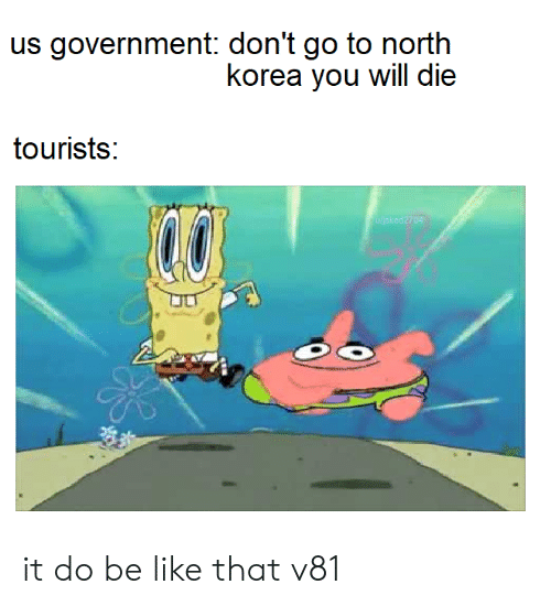 Be Like, North Korea, and Government: us government: don't go to north  korea you will die  tourists:  04 it do be like that v81