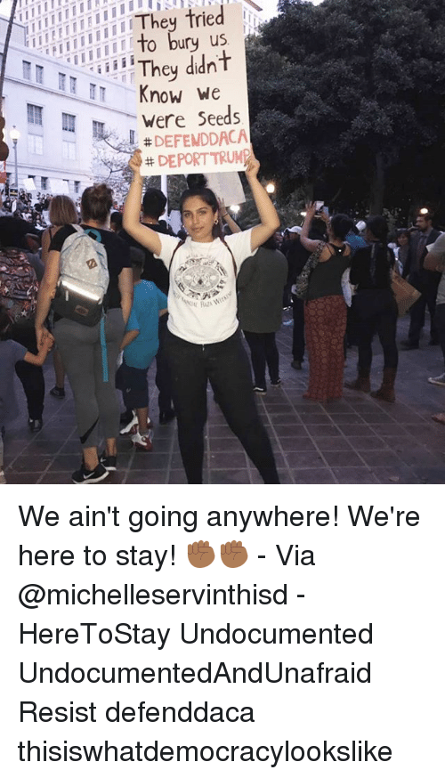 Memes, 🤖, and Resistance: us  Know We  Were Seeds  # DEFENDDACA  DEPORT TRUM We ain't going anywhere! We're here to stay! ✊🏾✊🏾 - Via @michelleservinthisd - HereToStay Undocumented UndocumentedAndUnafraid Resist defenddaca thisiswhatdemocracylookslike