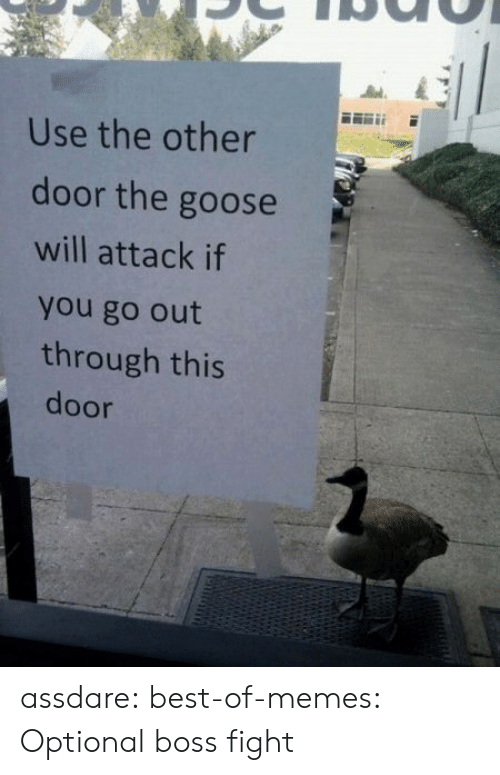 Best Of: Use the other  door the goose  will attack if  you go out  through this  door assdare:  best-of-memes:  Optional boss fight