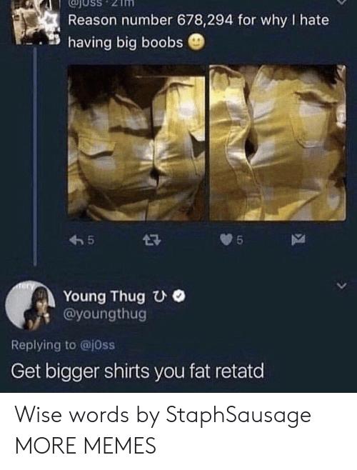 Wise: USS  Reason number 678,294 for why I hate  having big boobs  5  5  Tery  Young Thug UO  @youngthug  L  Replying to @j0ss  Get bigger shirts you fat retatd Wise words by StaphSausage MORE MEMES