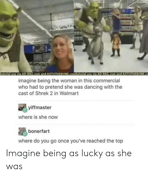 Dancing, Shrek, and Walmart: utorial use via AD-RAG.com.and ADTOTHEBONE.condutorial usevia AD-RAG.com and ADTOTHEBONE.co  imagine being the woman in this commercial  who had to pretend she was dancing with the  cast of Shrek 2 in Walmart  yiffmaster  where is she now  bonerfart  where do you go once you've reached the top Imagine being as lucky as she was