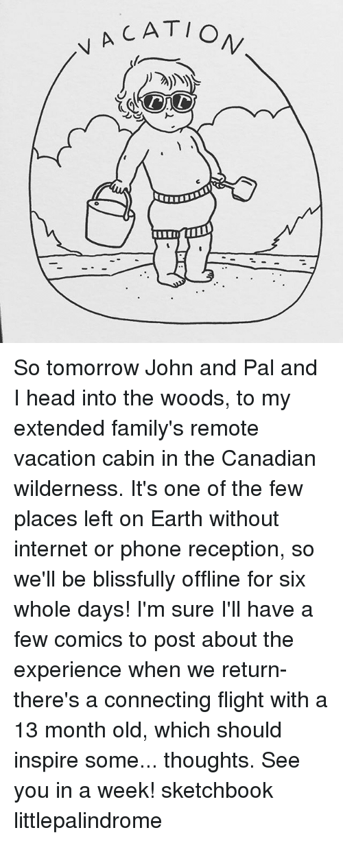 Head, Internet, and Memes: VA CAT/ So tomorrow John and Pal and I head into the woods, to my extended family's remote vacation cabin in the Canadian wilderness. It's one of the few places left on Earth without internet or phone reception, so we'll be blissfully offline for six whole days! I'm sure I'll have a few comics to post about the experience when we return- there's a connecting flight with a 13 month old, which should inspire some... thoughts. See you in a week! sketchbook littlepalindrome