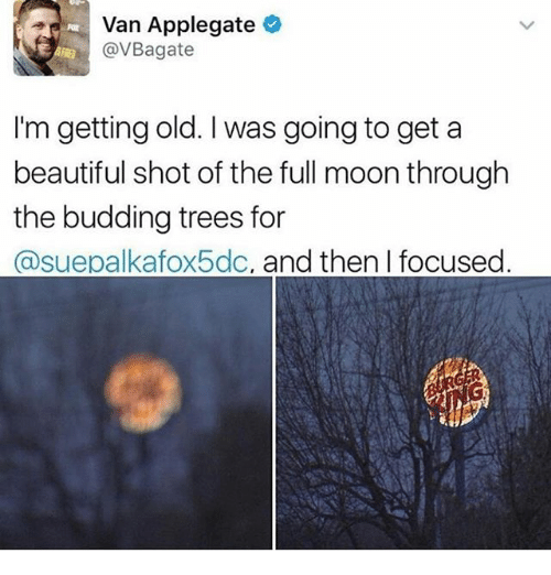 beautifull: Van Applegate  @VBagate  I'm getting old. I was going to get a  beautiful shot of the full moon through  the budding trees for  @suepalkafox5dc, and then I focused
