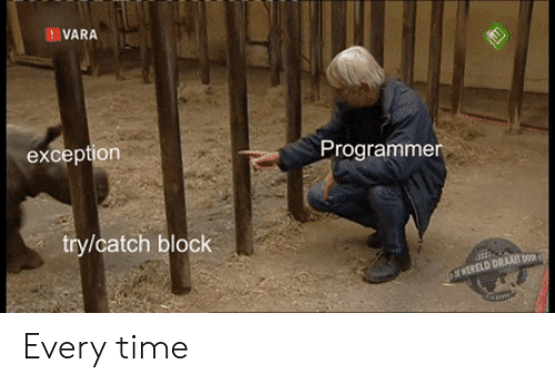 Time, Block, and Vara: VARA  Programmer  exception  try/catch block Every time