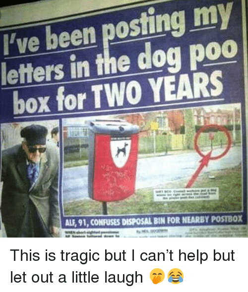 Memes, Help, and Been: ve been posting my  letters in the dog poo  box for TWO YEARS  ALF, 91, CONFUSES DISPOSAL BIN FOR NEARBY POSTBOX This is tragic but I can't help but let out a little laugh 🤭😂