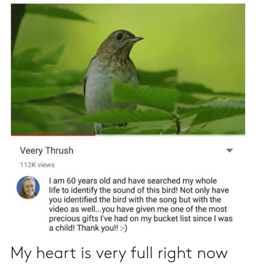 Bucket list: Veery Thrush  112K views  I am 60 years old and have searched my whole  life to identify the sound of this bird! Not only have  you identified the bird with the song but with the  video as well..you have given me one of the most  precious gifts I've had on my bucket list since I was  a child! Thank you!!- My heart is very full right now