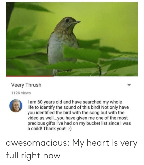 Bucket List, Life, and Precious: Veery Thrush  112K views  I am 60 years old and have searched my whole  life to identify the sound of this bird! Not only have  you identified the bird with the song but with the  video as well..you have given me one of the most  precious gifts I've had on my bucket list since I was  a child! Thank you!!- awesomacious:  My heart is very full right now
