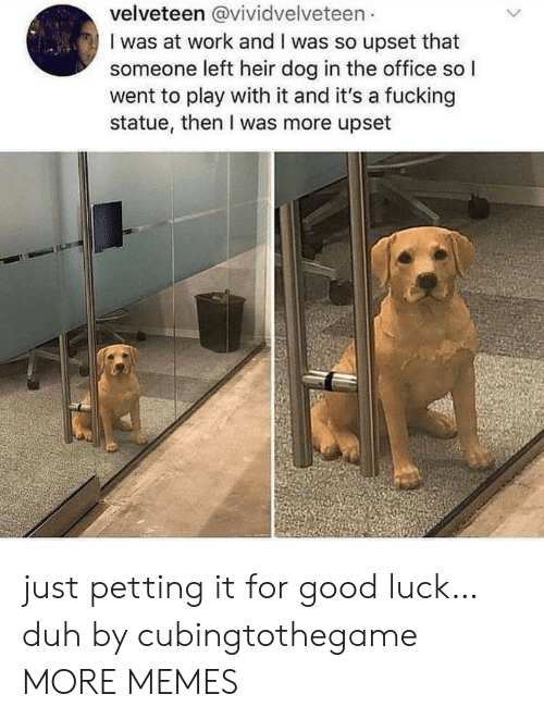 duh: velveteen @vividvelveteen  I was at work and I was so upset that  someone left heir dog in the office so I  went to play with it and it's a fucking  statue, then I was more upset just petting it for good luck… duh by cubingtothegame MORE MEMES