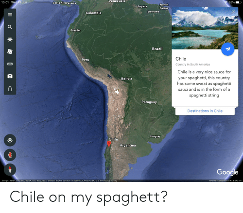 """America, Google, and Nasa: Venezuela  10:01 Wed 19 Jun  65%  Costa Ricapanama  French  Guyana  Guiana  Suriname  Colombia  Ecuador  Brazil  Chile  Peru  ww  Country in South America  Chile is a very nice sauce for  your spaghetti, this country  spaghetti  Bolivia  has some sweat as  sauci and is in the form of  spaghetti string  Paraguay  Destinations in Chile  Uruguay  Chile  Argentina  9 Gotle  Google  19 59'57""""S 66 15'02""""W 8.570 km  Google, INEGI, Data SIO, NOAA, U.S. Navy, NGA, GEBC0, IBCAO, Landsat / Copernicus, PGC/NASA, U.S. Geological Survey  (o  O Chile on my spaghett?"""