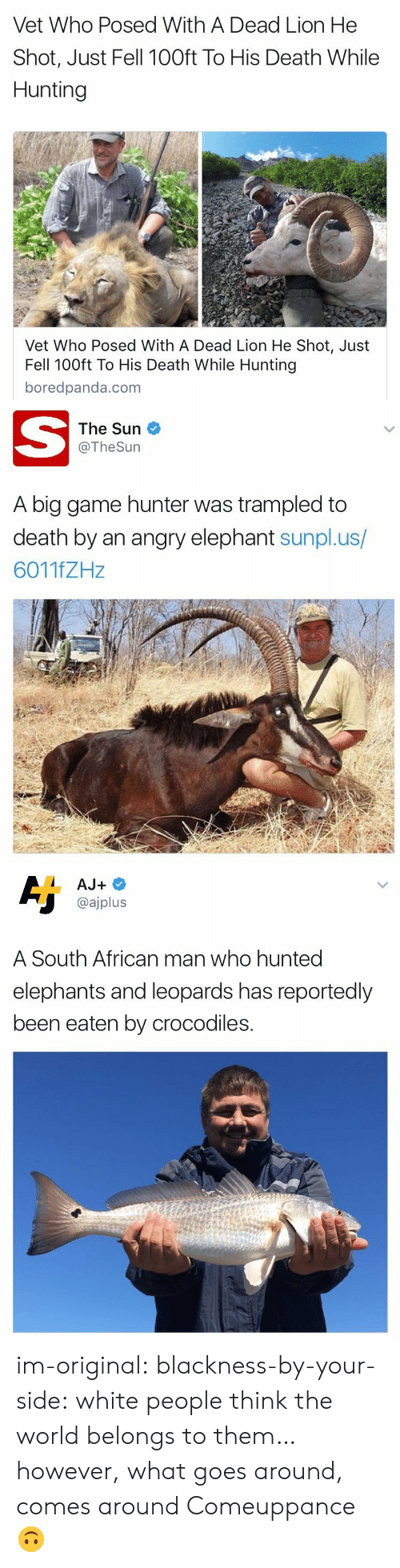 Target, Tumblr, and White People: Vet Who Posed With A Dead Lion He  Shot, Just Fell 100ft To His Death While  Hunting  Vet Who Posed With A Dead Lion He Shot, Just  Fell 100ft To His Death While Hunting  boredpanda.com   The Sun  @TheSurn  A big game hunter was trampled to  death by an angry elephant sunpl.us/  6011fZHz   @ajplus  A South African man who hunted  elephants and leoparas has reportedly  been eaten by crocodiles. im-original: blackness-by-your-side:  white people think the world belongs to them… however, what goes around, comes around  Comeuppance 🙃