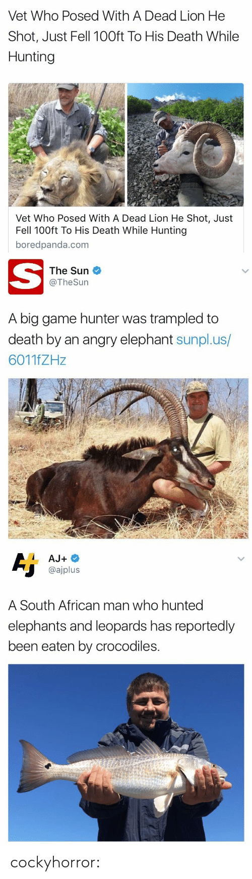 Gif, Target, and Tumblr: Vet Who Posed With A Dead Lion He  Shot, Just Fell 100ft To His Death While  Hunting  Vet Who Posed With A Dead Lion He Shot, Just  Fell 100ft To His Death While Hunting  boredpanda.com   The Sun  @TheSurn  A big game hunter was trampled to  death by an angry elephant sunpl.us/  6011fZHz   @ajplus  A South African man who hunted  elephants and leoparas has reportedly  been eaten by crocodiles. cockyhorror: