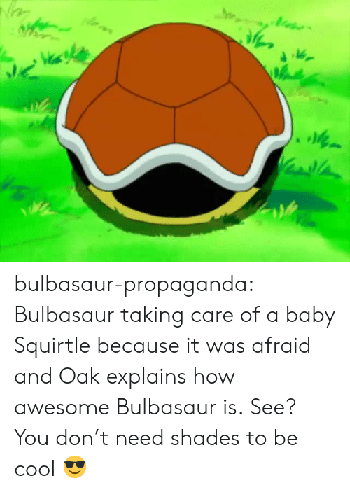 bulbasaur: Vi bulbasaur-propaganda:   Bulbasaur taking care of a baby Squirtle because it was afraid and Oak explains how awesome Bulbasaur is.   See? You don't need shades to be cool 😎