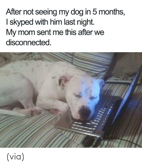 R Wholesomememes: (via)